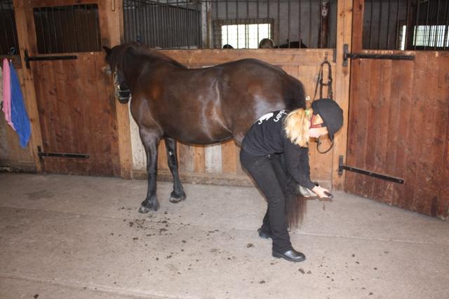 Ella och Freja i stallet