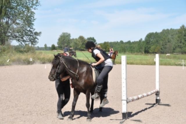 Upp på hästen igen